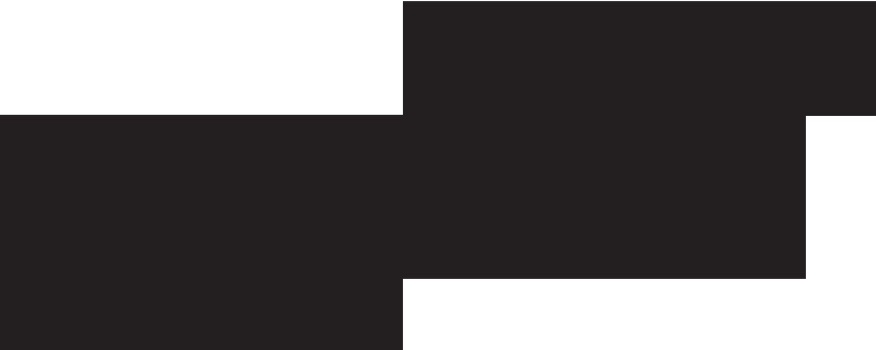 sari french